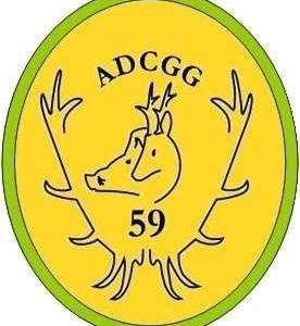 adcgg59